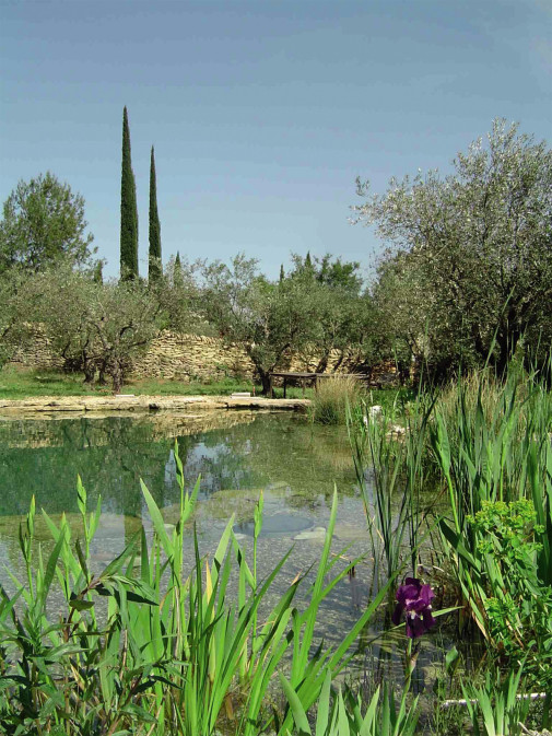 Prirodni bazen iz drugog ugla