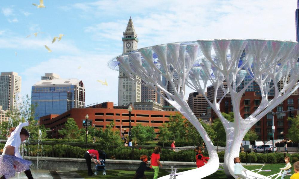 Solarno drvo