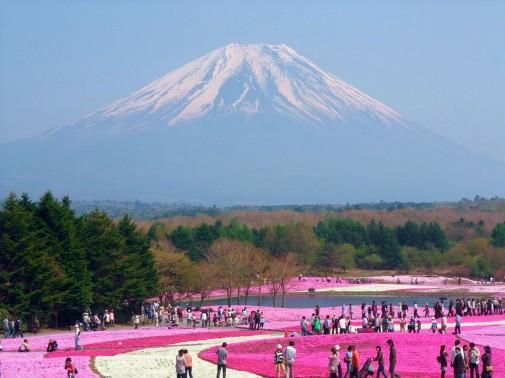 Cvetni japanski park
