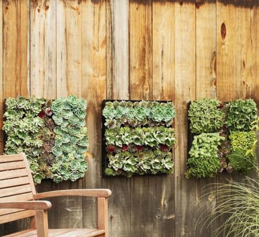 Ukrasite zid vaše bašte