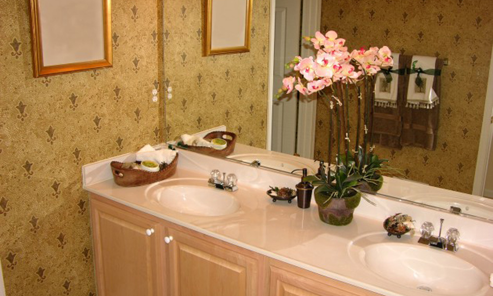 Biljke u kupatilu