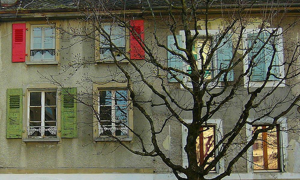 prozori i šalokatre