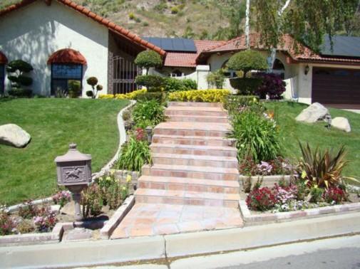 Cveće osvežava vaše dvorište