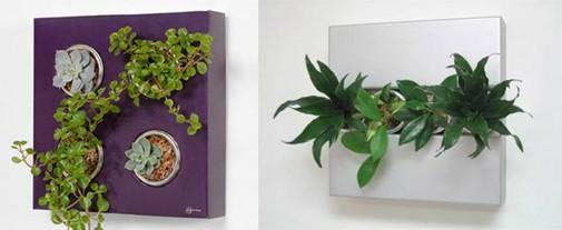 Cvetna kutija