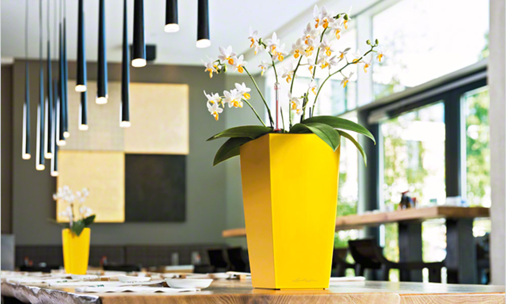 Moderna vaza u žutoj boji