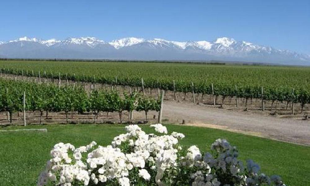 Pokrajina Mendoza, Argentina