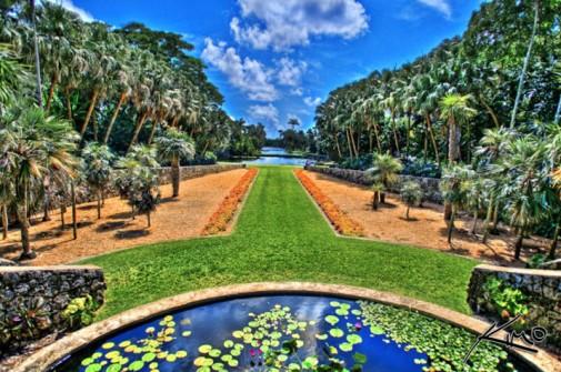 Bašta je takođe vodeći centar za proučavanje palminog drveća