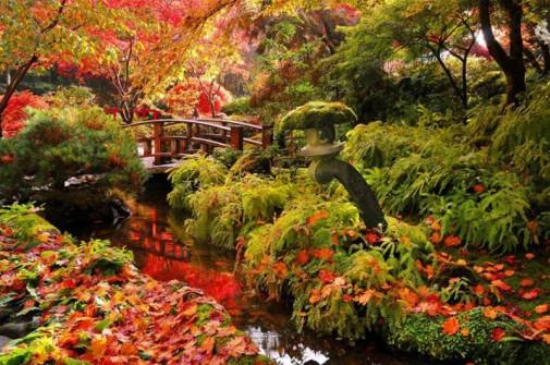 Jesen u prelepom vrtu