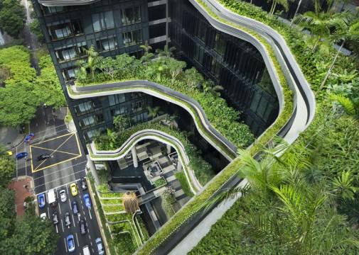 Parkrojal zelena terasa