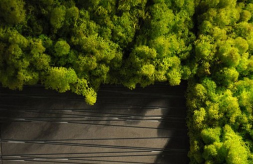 Unutrašnja vertikalna bašta slika4