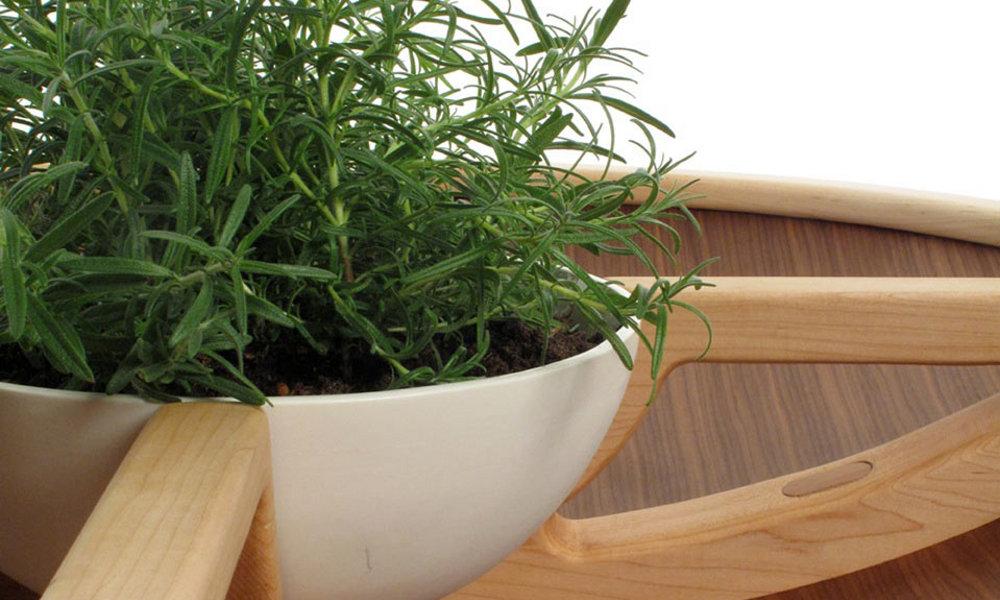 Zasadivi sto