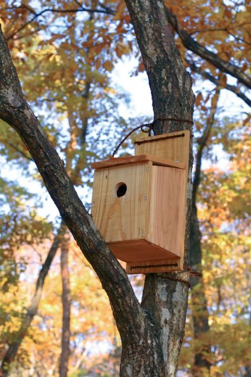 Kućica za ptice slika 4