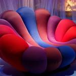 Anemone stolica