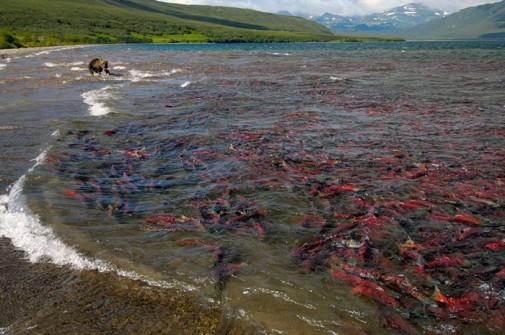 Jezero Kuril slika 2