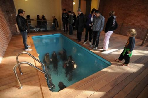 Lažni bazen slika 4
