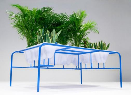 Personalni mali vrt na radnom stolu slika 2