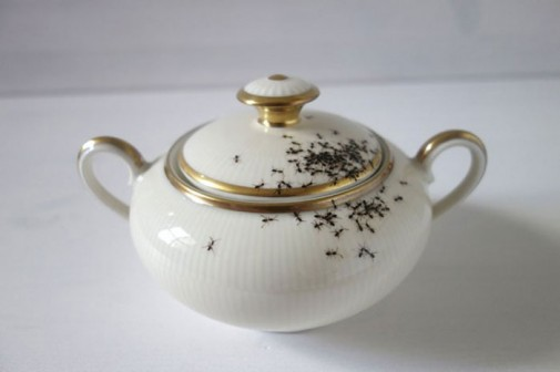 Porcelanski set sa mravima slika2