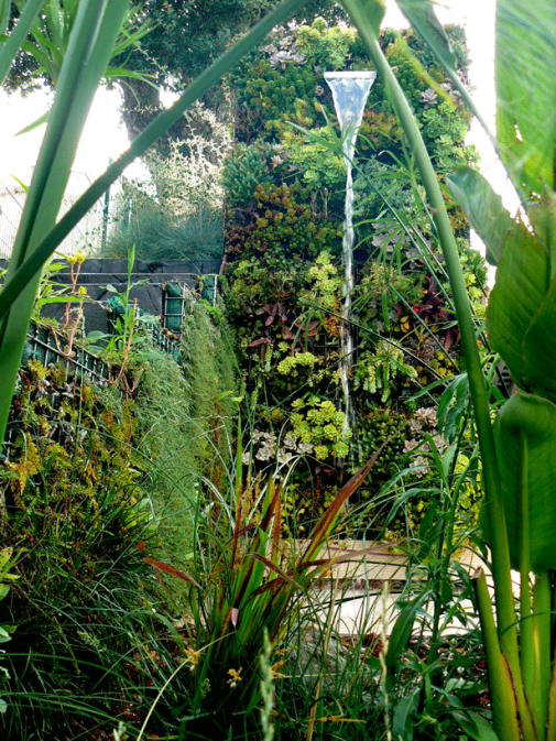 Vertikalni vrt i kupanje slika 3