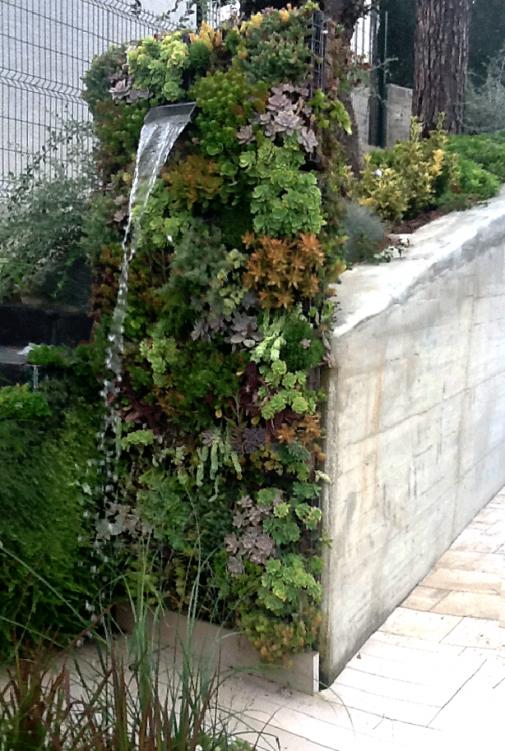 Vertikalni vrt i kupanje slika 4