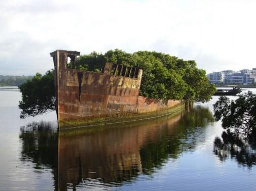 102 godine stara olupina broda slika3