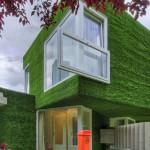 Kuća prekrivena veštačkom travom