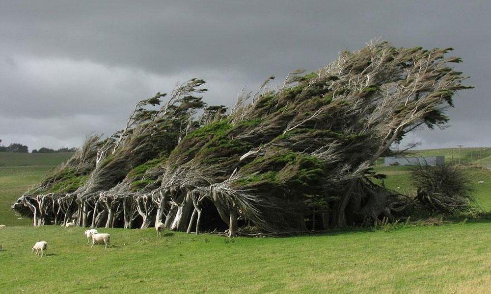 Slope Point Novi Zeland