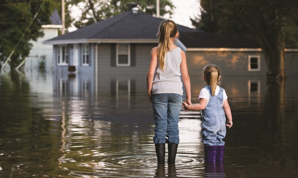 Kako posle poplave?