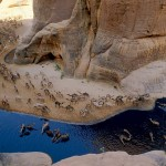 Oaza Guelta d'Archei