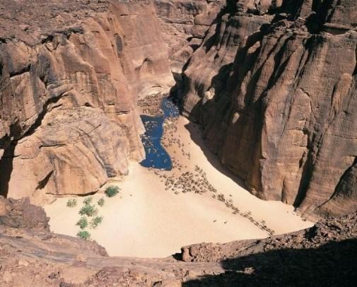 Oaza Guelta d'Archei slika 2
