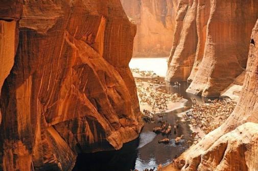 Oaza Guelta d'Archei slika 3