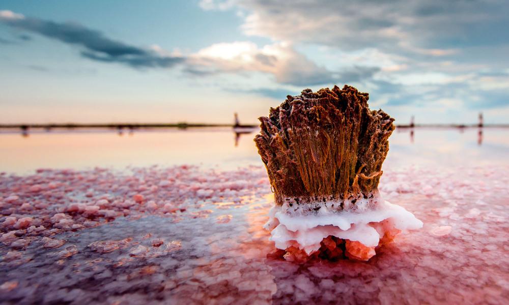 Slane lagune Krima