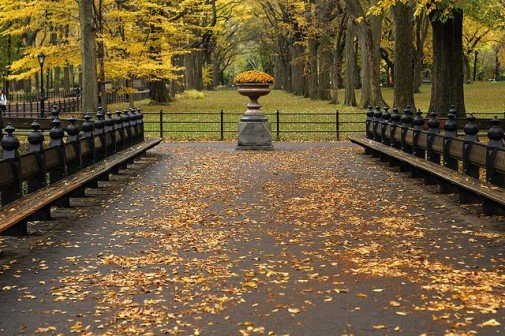 Central park, Njujork