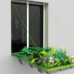 Prozor koji postaje bašta