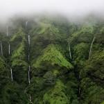 Zid suza na Havajima