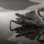 Smrtonosno alkalno jezero u Africi