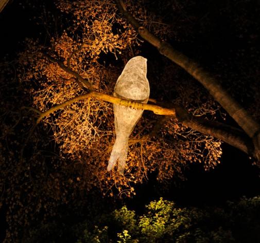 Žičane ptice osvetljavaju Ženevu