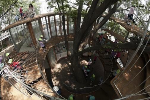 Objekat oblikovan oko drveta 2