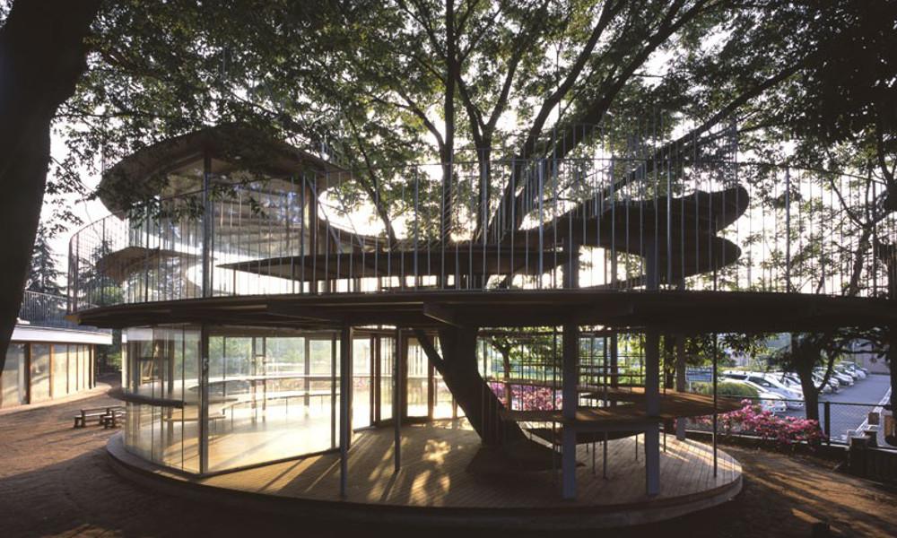 Objekat oblikovan oko drveta