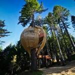 Elegantan restoran na vrhu drveta