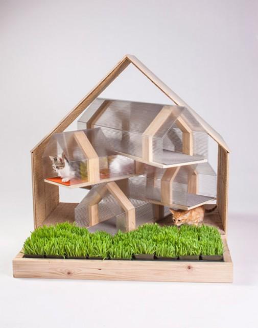 Arhitekte kreiraju domove za mačke