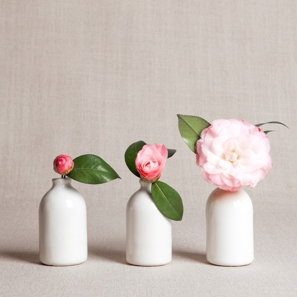 chic-minimalistic-vase-collection-600x600