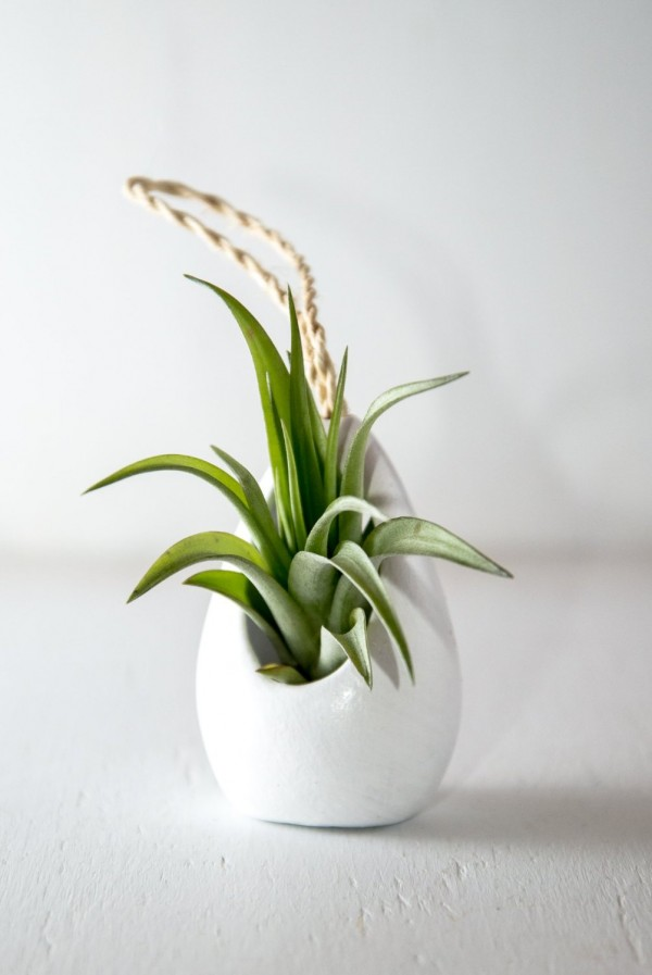 simple-hanging-planter-600x897